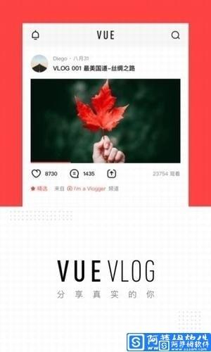 vue vlog