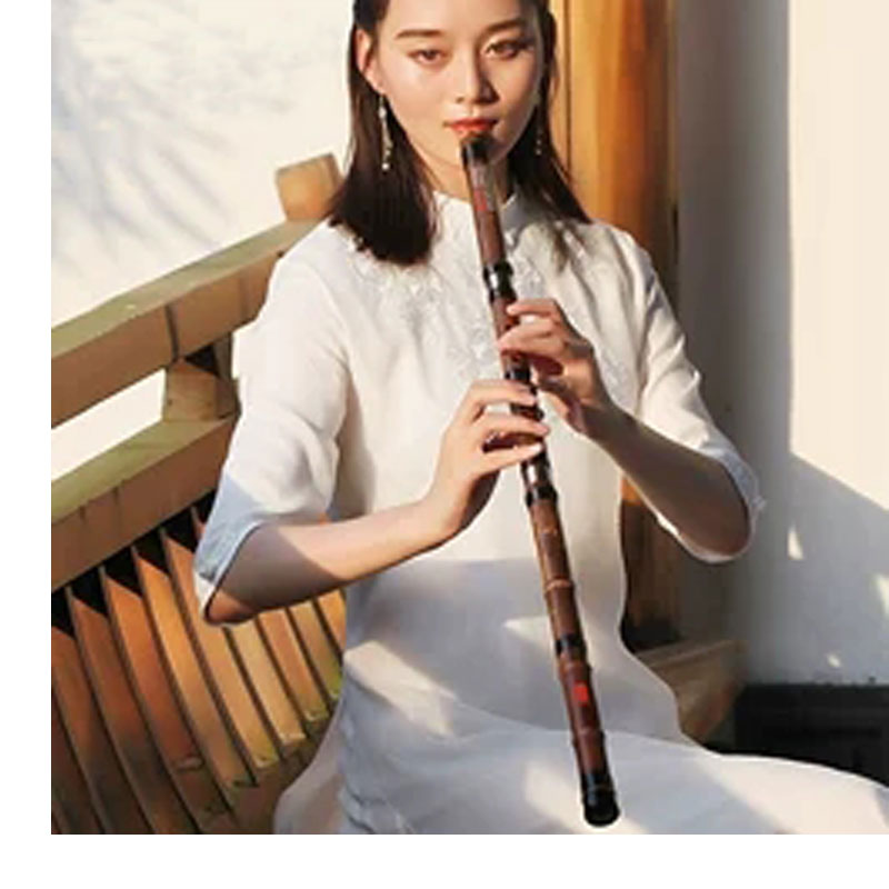 Chinese Vertical Bamboo Flute Purple Bamboo Xiao Musical Instrument F Tone Beginner 8 Holes G Key