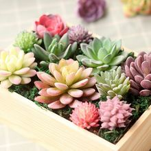 Simulation Mini Plastic Succulents Plants Garden Home Office Decoration Cute Handmade Flocking Realistic Green Plants Decor