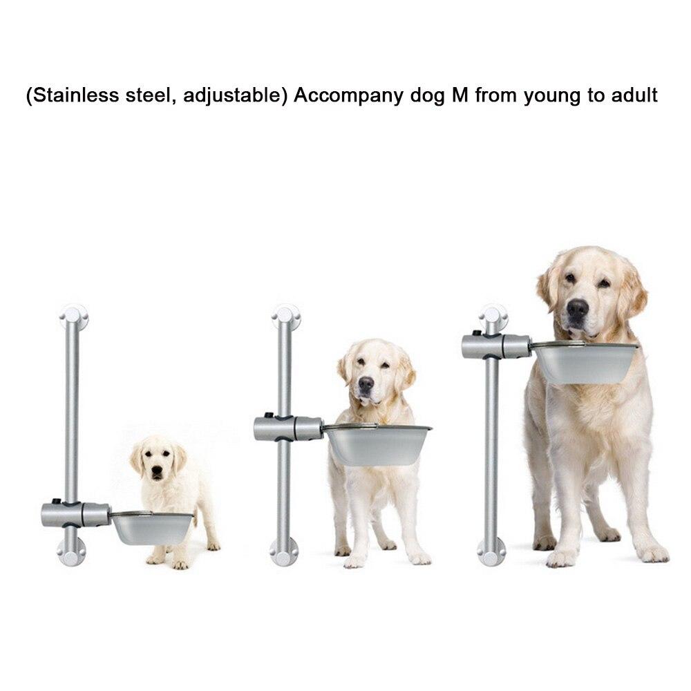 Alimentação p/ cães