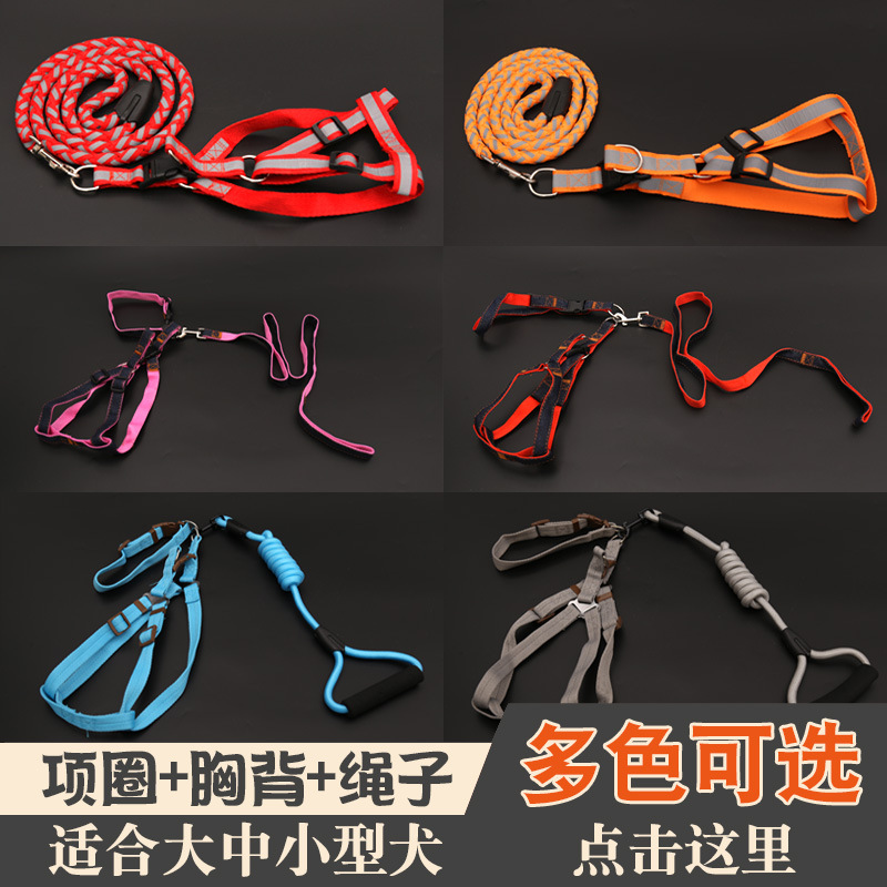 Small Dogs Medium Cat Dog Rope Pet Dog Chain Puppy Dog Hand Holding Rope Neck Ring Teddy Traction