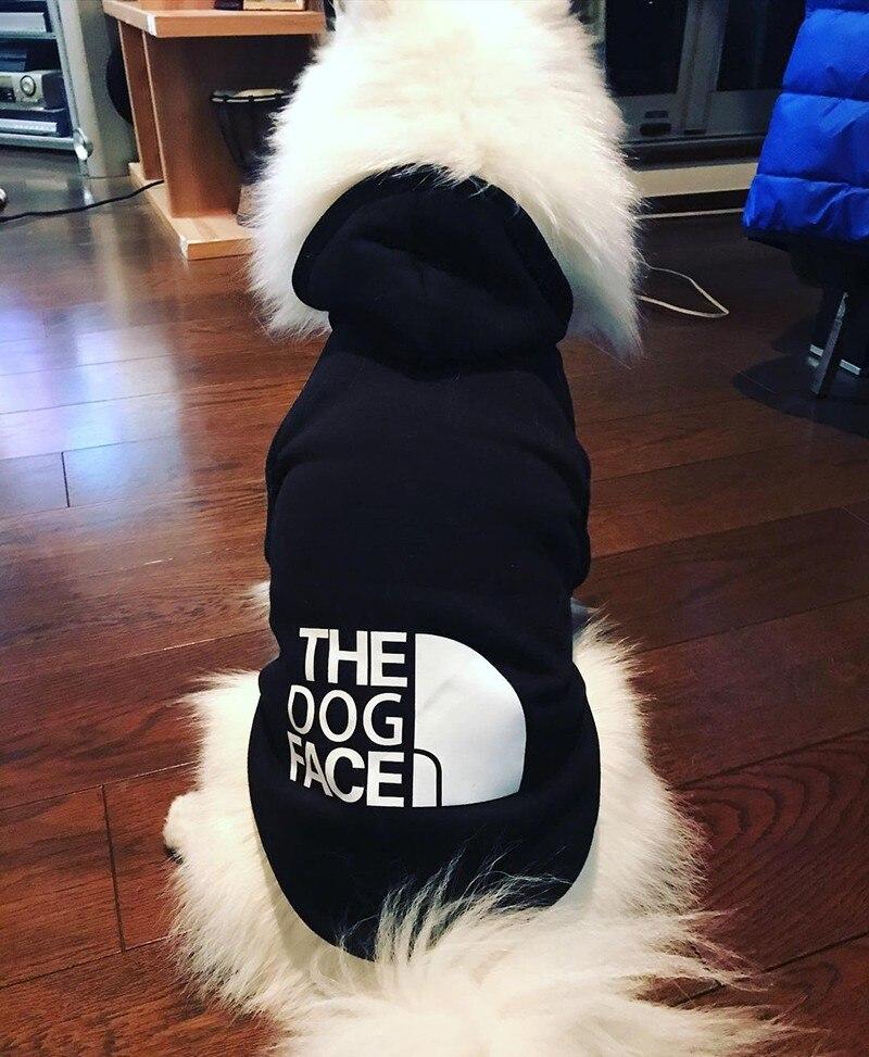trendy dog hoodie