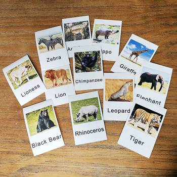 Montessori Gestures English Animal Flash Card Pocket Cards Learning Educational Toys English Word Picture Match Game Baby Gift millie picture and word cards карточки с рисунками и словами