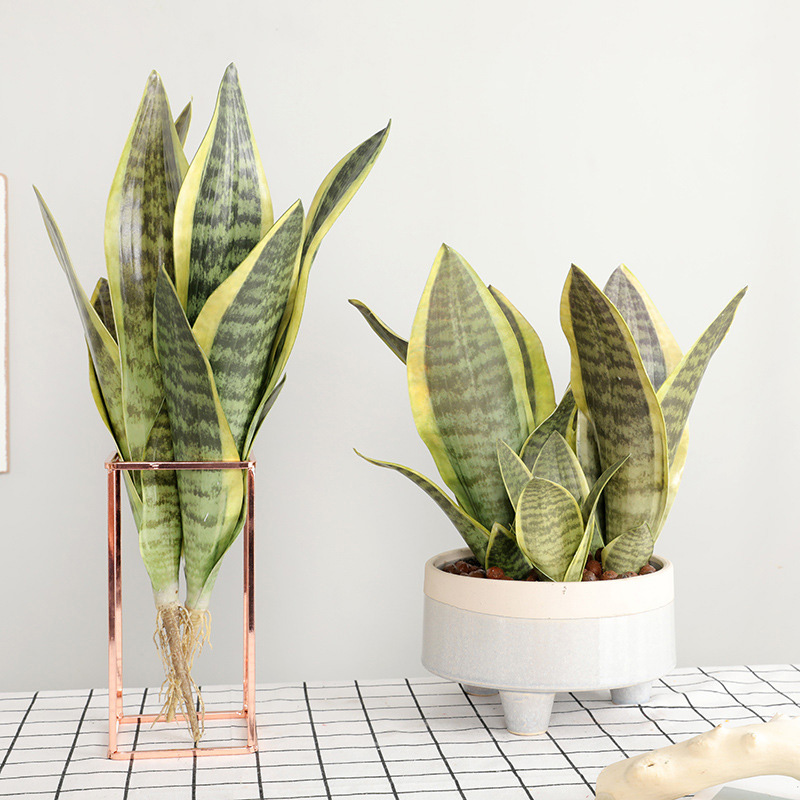 Desert Fake Plants Sansevieria Artificial Flower Trifasciata Simulation Succulent Agave Plant Home Office Shop Garden Decoration