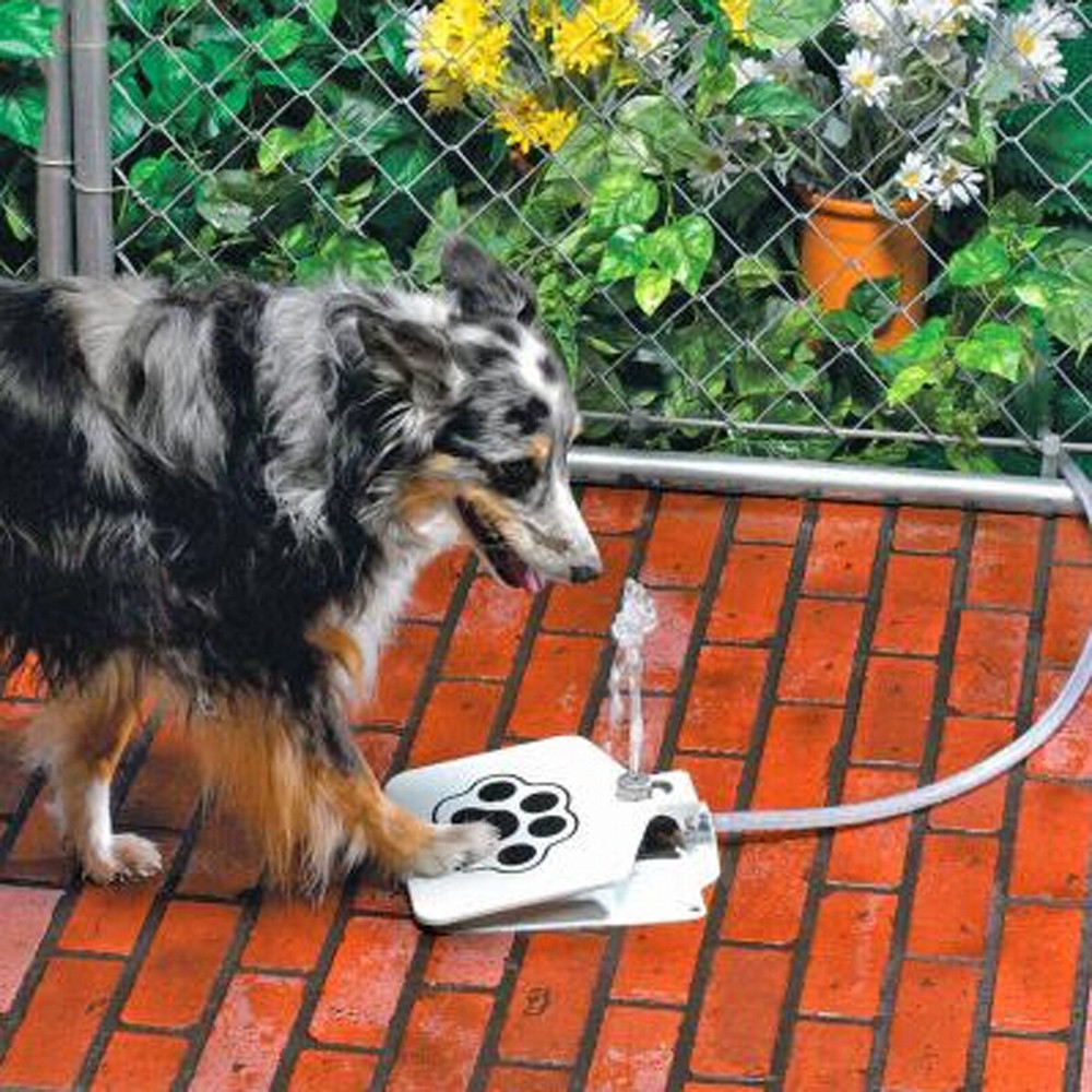 Outdoor Dog Pet Drinking Doggie Activated Water Fountain Hose Water Dispenser#PY