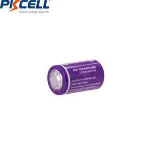 Image 4 - 10PCS/lot PKCELL 1/2 AA Battery 3.6V ER14250 14250 1200mAh LiSOCl2 Lithium Battery Batteries for GPS