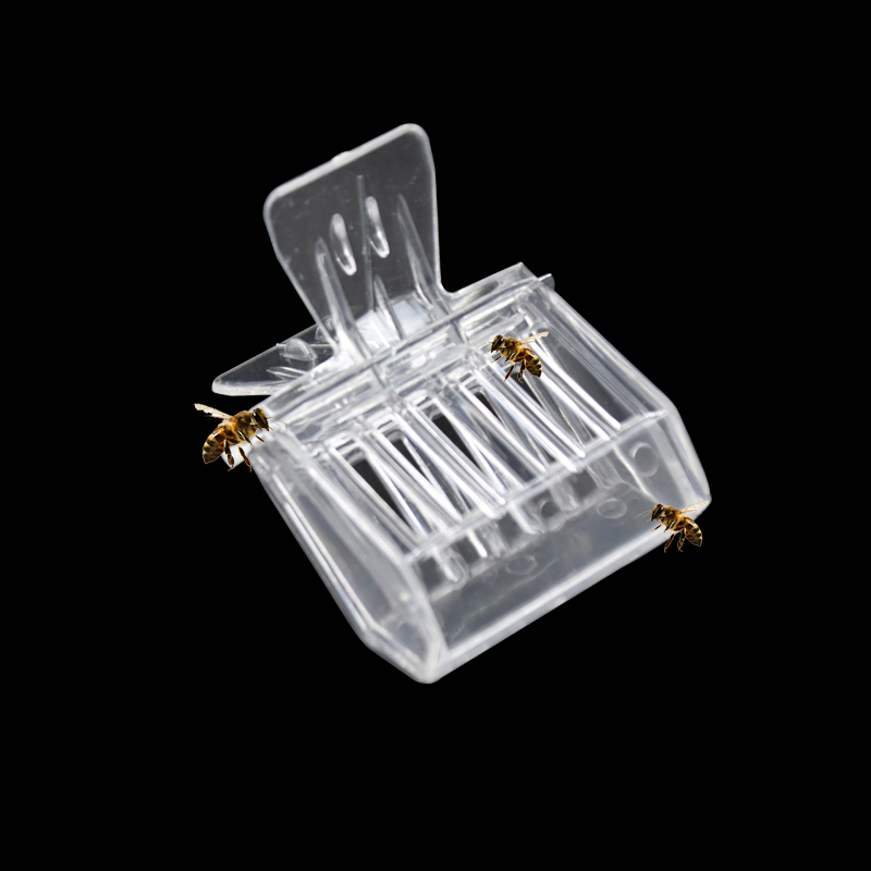 2 PCS Beekeeping Equipment Bee Tools Queen Cage Colorless Plastic Clip Bee Clip