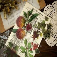 10 шт/упак Винтаж калька Бумага с большим цветком и иллюстрации