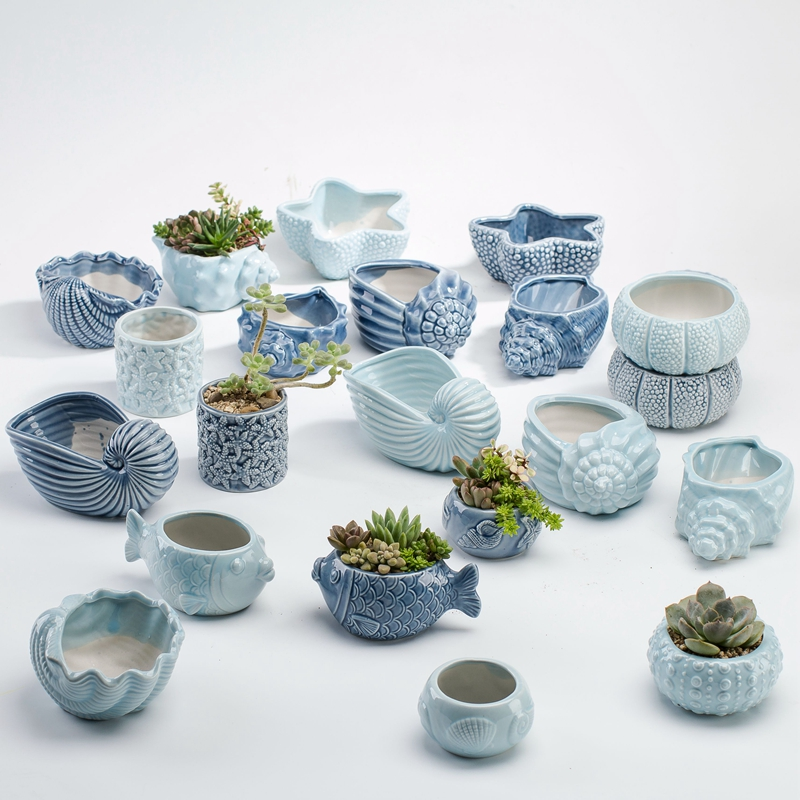 Blue Ocean Series Fleshy Flowerpot Vase European Style Shell Fish Shape Ceramic Bonsai Plant Pots Succulents Planter for Desktop