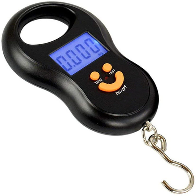 50kg x 10g Mini Digital Scale for Fishing Luggage Travel Weighting Steelyard Hanging Electronic Hook Scale Kitchen Weight Tool