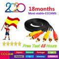 Лучший 2020 egygold стабильный Европейский CCCAM Испания для 1 года GTmedia V8 OScam Португалия espa Европа Cline Португалия сервера CCam линии