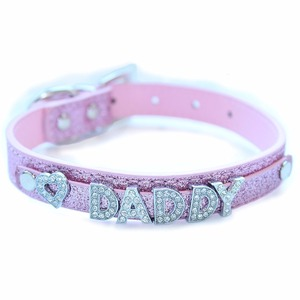 Daddy Dom DDLG/ ABDL Leather Collar(China)