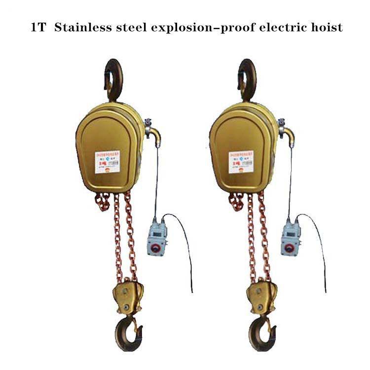 Customization Of 1T Stainless Steel Explosion-proof Electric Hoist Pure Copper Explosion-proof Electric Hoist