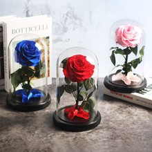 Красный цветок вечной жизни, розовый цветок красавицы и чудовища, Розовый стеклянный купол, День матери, День Святого Валентина, рождественский подарок