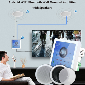 Bluetooth Wall Amplifier WIFI Wireless with 5/6