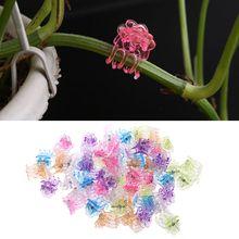 Fix-Orchid-Clips Support-Clamps Flowers Fruit Plant Plastic Garden 60pcs