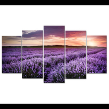 5 Planes Lavender Room Decor Canvas Art Painting Picture Photo Living Office for Women and Men