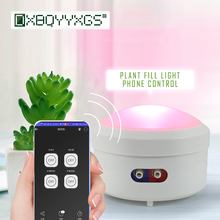 Garden Automatic irrigation system Household Watering machine intelligent WIFI Mobile phone remote control Plant growth light wifi smart watering valve intelligent drip irrigation phone remote controller diverse timing