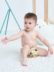 Image 3 - [Littles&Bloomz]9pcs/set STANDARD Hook Loop Reusable Washable Nappy Diaper,9 nappies/diapers and 0 microfiber inserts in one set