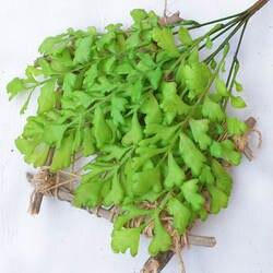 Спрей цвет зеленый завод Platycerium мягкий Silcone Handfeel Adiantum растение стена с деревянная модель персидский папоротник водные растения Plasti