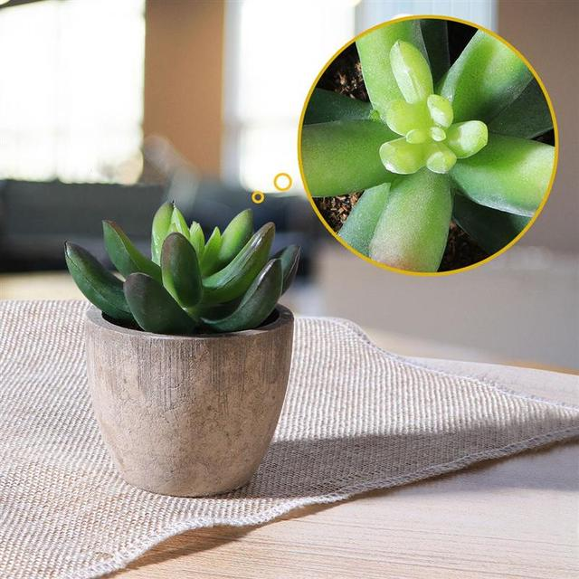 3 Succulent Artificial Plants with Pots