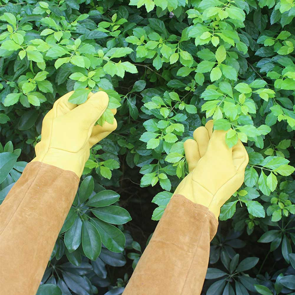 Non Slip Gardening Gloves Puncture Resistant Cut Proof Trimming Beekeeping Yard Welding Long Sleeve Soft Working Rose Pruning