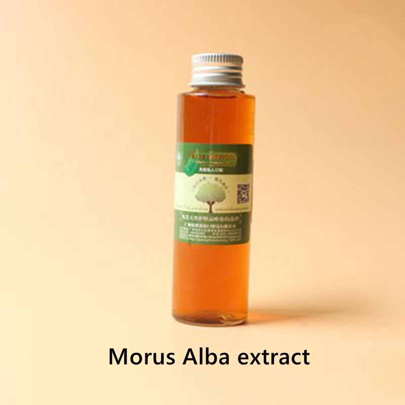 Hot Selling  Morus Alba Extract  Whitening, Moisturizing, Anti-aging, Anti-oxidation, Weight Loss Superior Quality Pure Natura