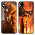 Entropy horse brown ...