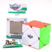 Ciclone meninos 3x3x3 cubos de skewb magnético profissional 2*2*2 ímã magia velocidade cubo twisty puzzle brinquedos educativos para meninos