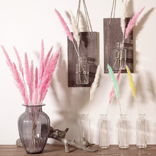 new 15Pcs Bulrush Natural Dried Small Pampas Grass Phragmites Communis Wedding Flower Bunch for Home Decor 6 Colors