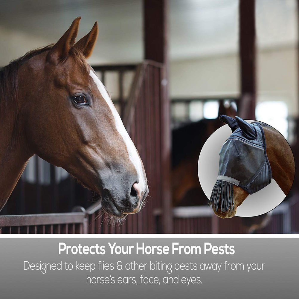 horse face cover