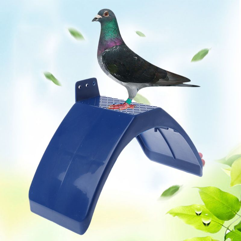 20 PCS Dove Rest Stand Blue Frame Pigeon Perches Roost Dwelling Supplies Birds