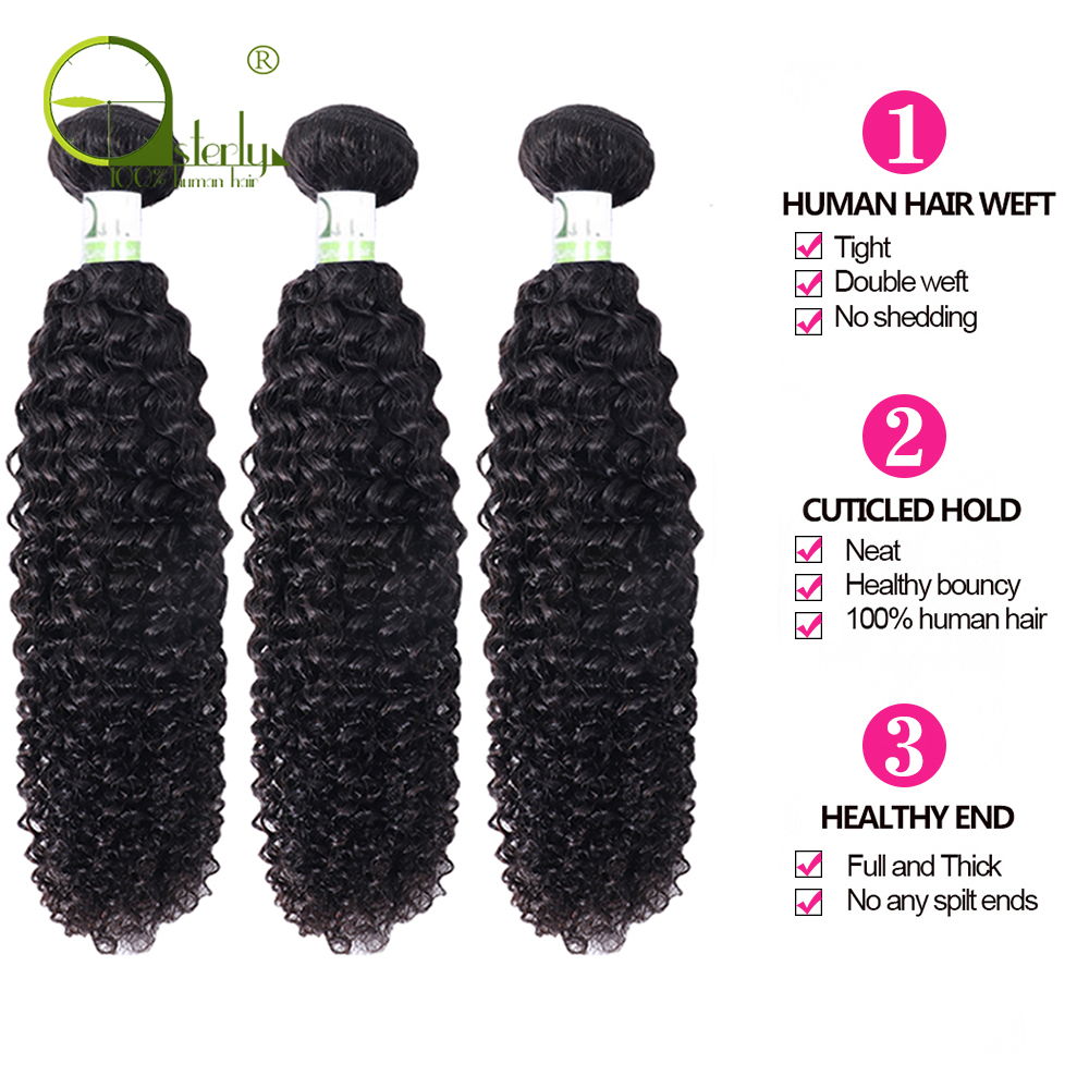 H50541e7c98f24d2e833ebe9275a88a87T Sterly Kinky Curly Bundles With Frontal Remy Human Hair Bundles With Closure Brazilian Hair Weave Bundles With Closure