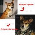 Изготовленный на заказ для домашних животных портрет изображения ПЭТ холст для картины на индивидуальный заказ Ретро Стиль Животные Творч...