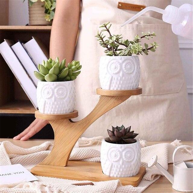 2 Styles Ceramic Succulent Pots Garden Planter for Plants Bonsai Pot Bamboo Plants Stand Sets 2