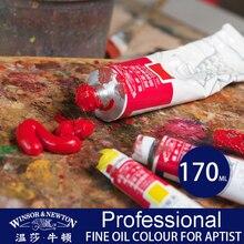 цена на Professional 170ml Oil Paints Set Professional Color Paint for Artist Oil Painting Drawing Supplies Single Color