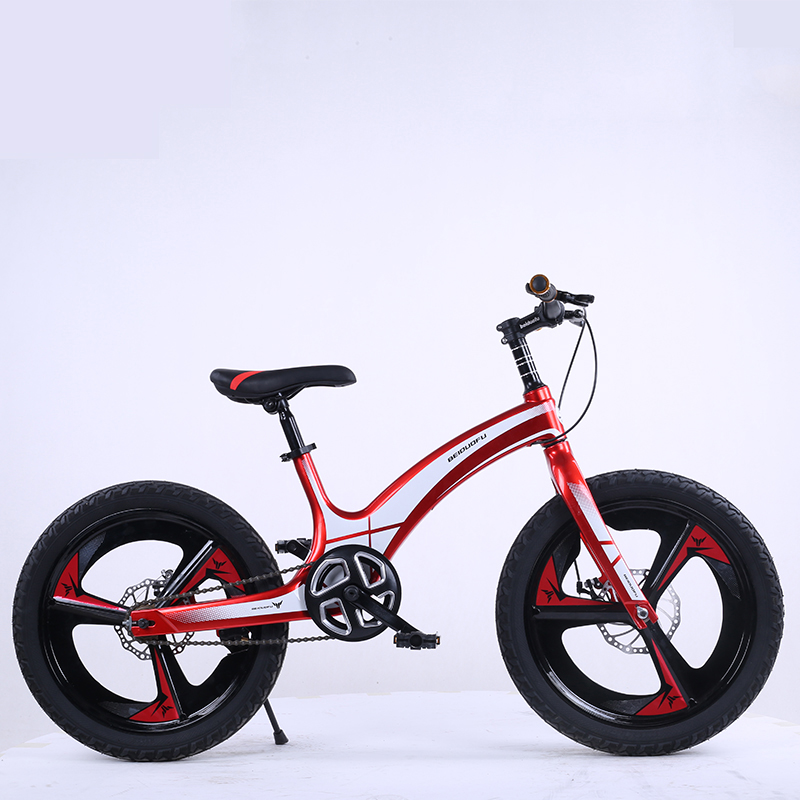 2019 New Magnesium Alloy One Wheel 20 Inch Children's Bicycle, Single Speed Bicycle
