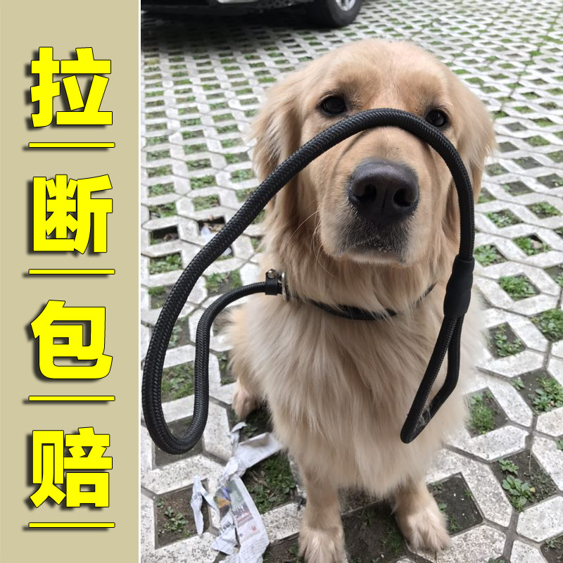 P Pendant Small And Medium-sized Dogs Riot Rushed Large Dog Golden Retriever Dog P Lanyard Training Large With Traction Canine C