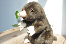 Милая маленькая мышь крот Ant Mouse, австралийская коала, кукла, Имитация животных, плюшевая игрушка, подарок на день рождения