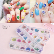 Get more info on the 12 Colors Dried Flower Nail Decorations Box Natural Floral Leaf Stickers 3D Nail Art Manicure Accessories Nail Art Decals