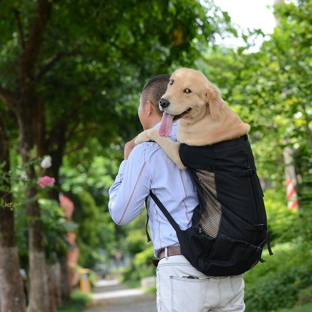 Large Dog Carrier Backpack 2