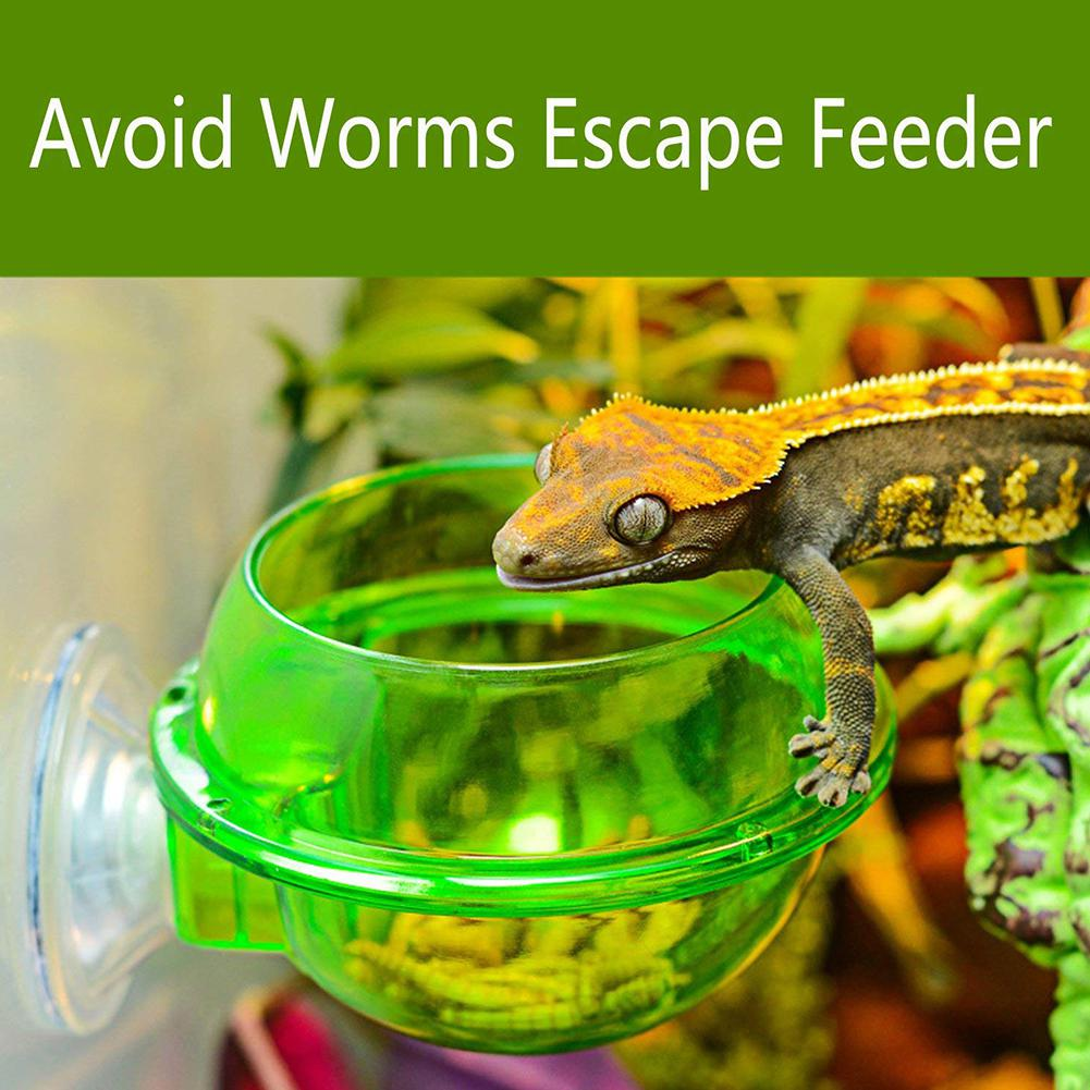 Green Anti-escape Food Bowl Worm Live Fodder Container For Pet Lizard Chameleon