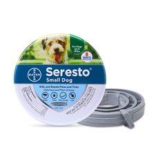 Remove pulga e colar de carrapato cães gatos até 8 mês pulga colar de carrapato anti-mosquito e repelente de insetos para gatos