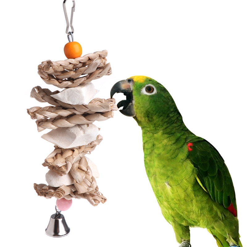 Parrot Bird Toys Natural Wood Cuttlebone Grass Chew Bite Hanging Cage Bell Swing