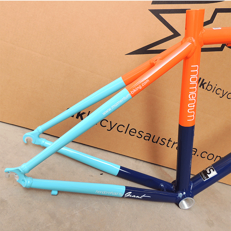 Giant road bike frame (8)