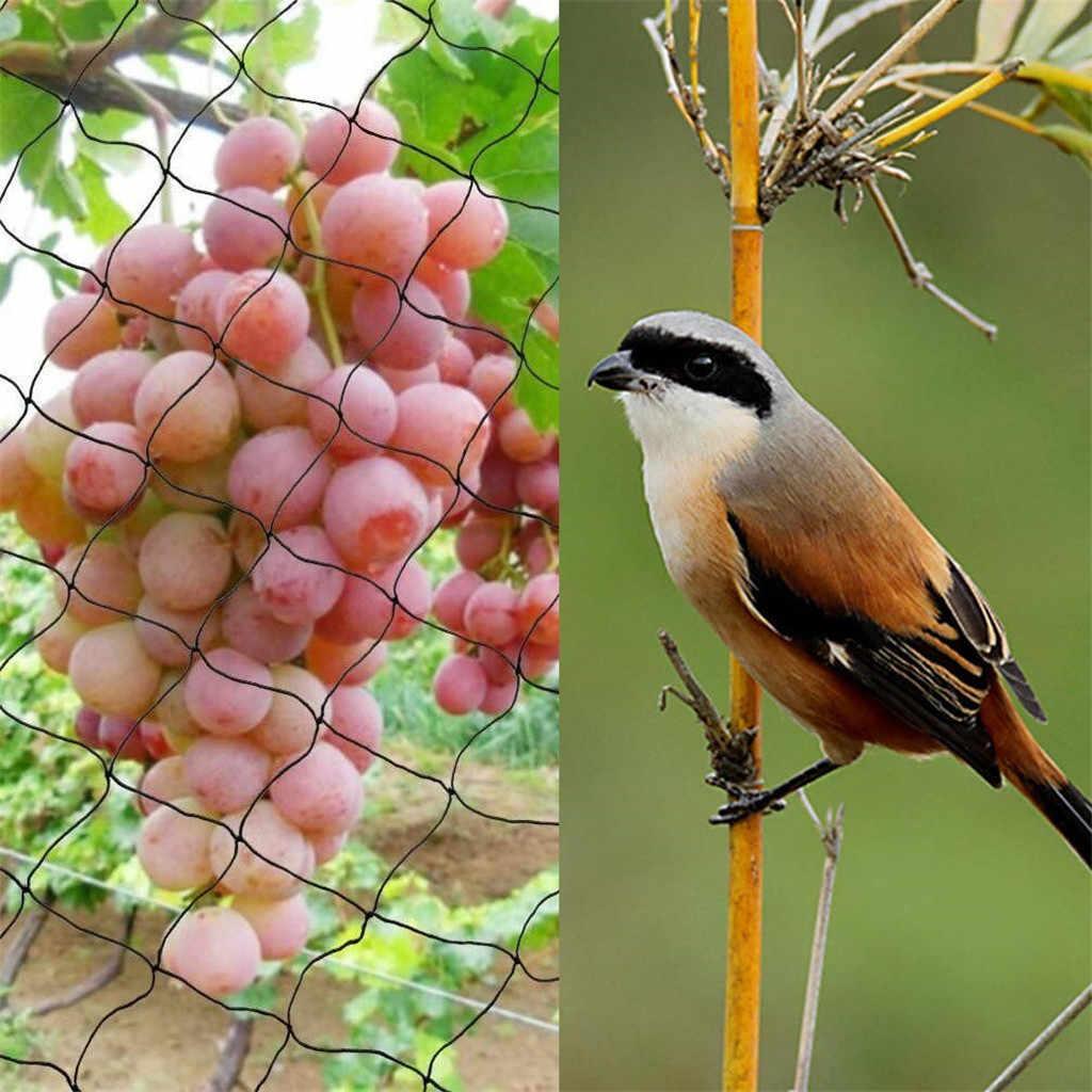 شبكة حماية ضد الطيور شبكة سياج الغزلان شبكة البركة 2.1x10M #50 الطيور المعاوضة الثقيلة حديقة صافي حماية النباتات وأشجار الفاكهة