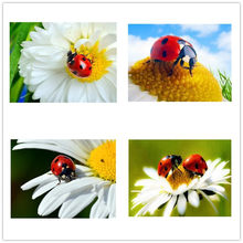 Dpsupr Diamond Mosaic Square/Round Flower Insect scenery Rhinestones Pictures Diamond Embroidery Diamond Painting Kit Gift(China)