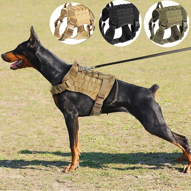 Tactical Dog Vest Breathable military dog clothes K9 harness adjustable size Training Hunting Molle Dog Vest Harness|Sets|   - AliExpress