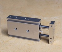 bore 25mm X10mm stroke CXS Series double shaft pneumatic air cylinder