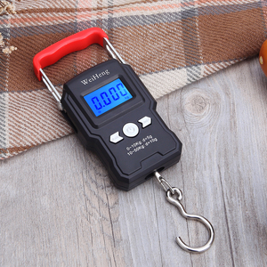 50Kg/55KG 5g/10g LCD Digital Display Mini Electronic Weighing Scale Hanging Hook Scale Double Accuracy for Fishing Outdoo Travel